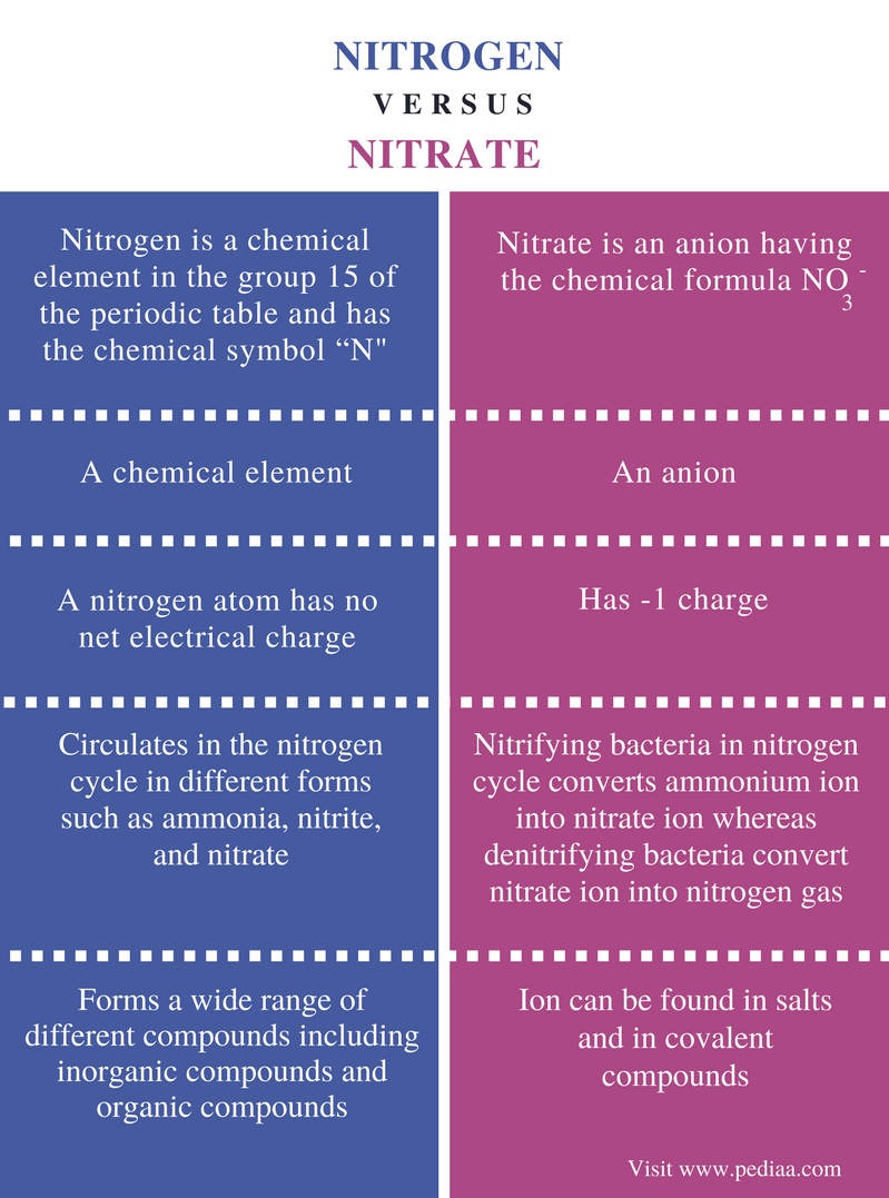 Difference between nitrogen and nitrate definition chemical difference between nitrogen and nitrate biocorpaavc Images