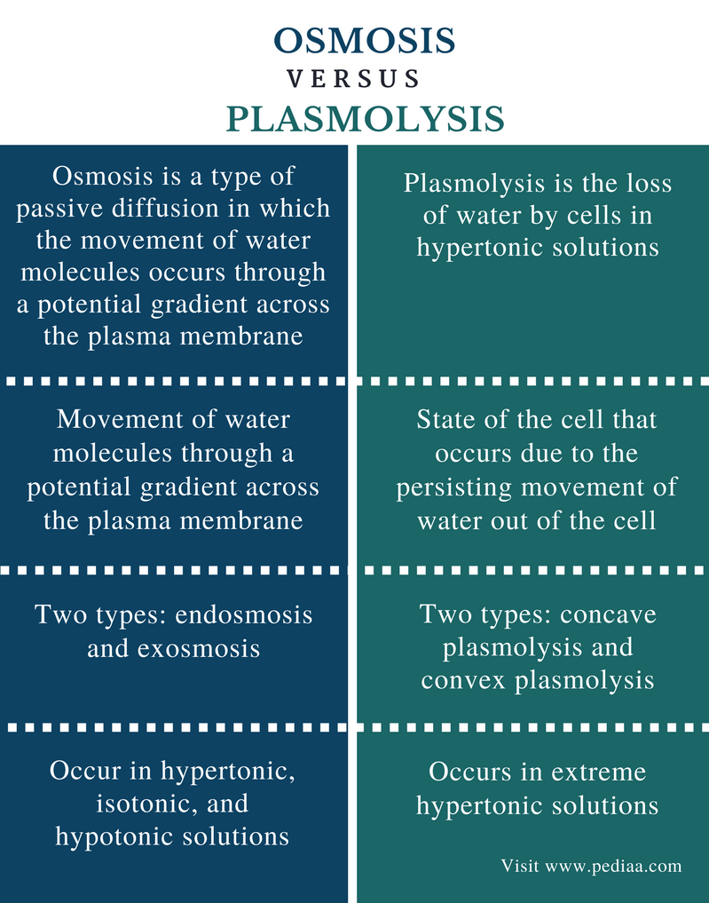 Difference Between Osmosis and Plasmolysis - Comparison Summary