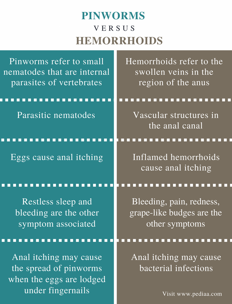 Difference Between Pinworms and Hemorrhoids - Comparison Summary
