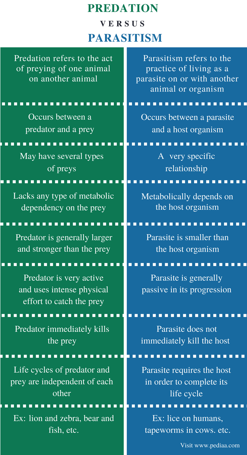 Difference Between Predation and Parasitism - Comparison Summary