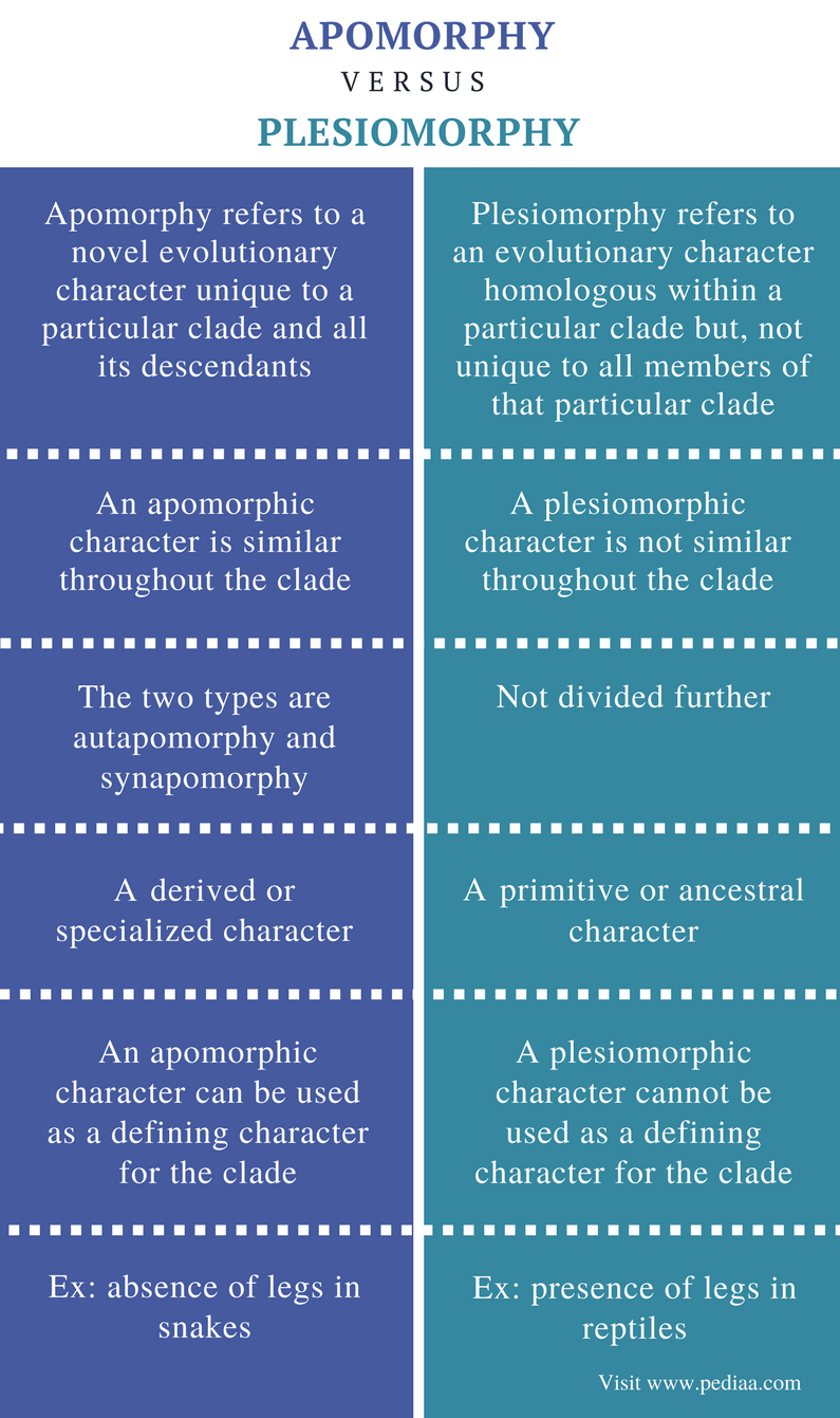 Difference Between Apomorphy and Plesiomorphy - Comparison Summary