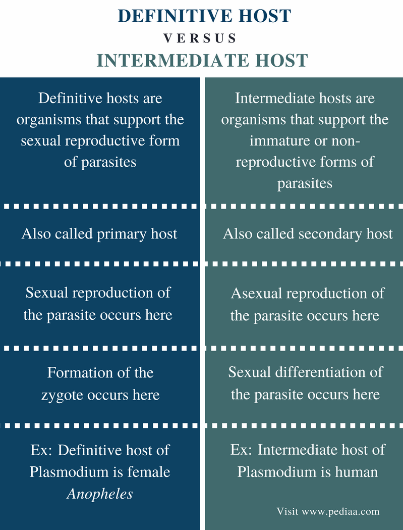 Difference Between Definitive Host and Intermediate Host - Comparison Summary
