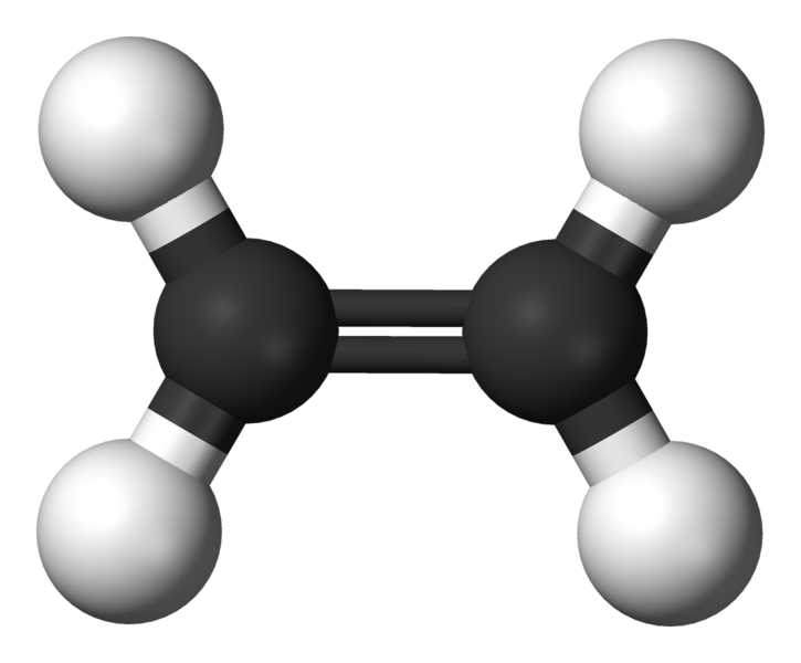 Difference Between Ethylene and Acetylene