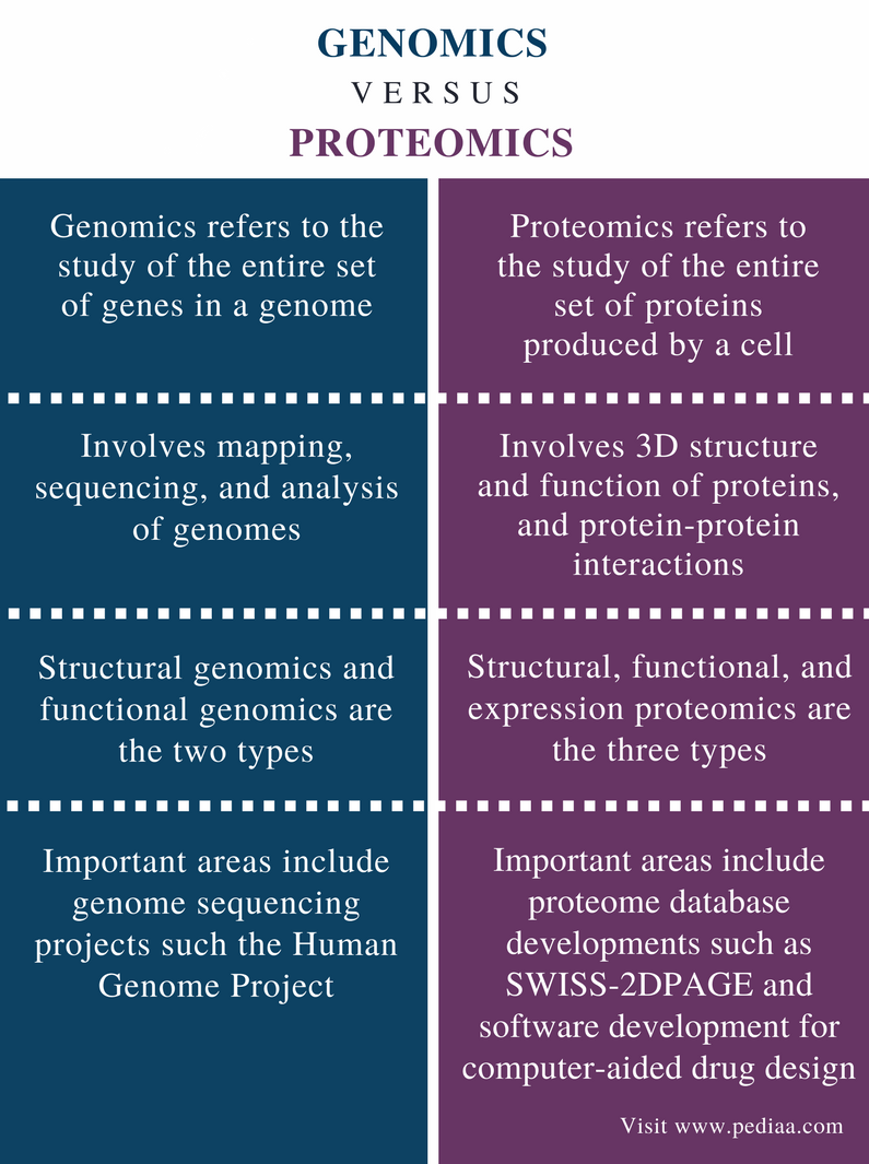 Difference Between Genomics and Proteomics   Definition ...