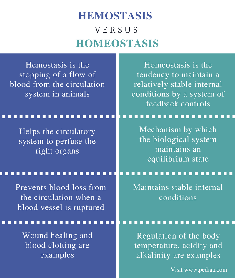 Difference Between Hemostasis and Homeostasis - Comparison Summary