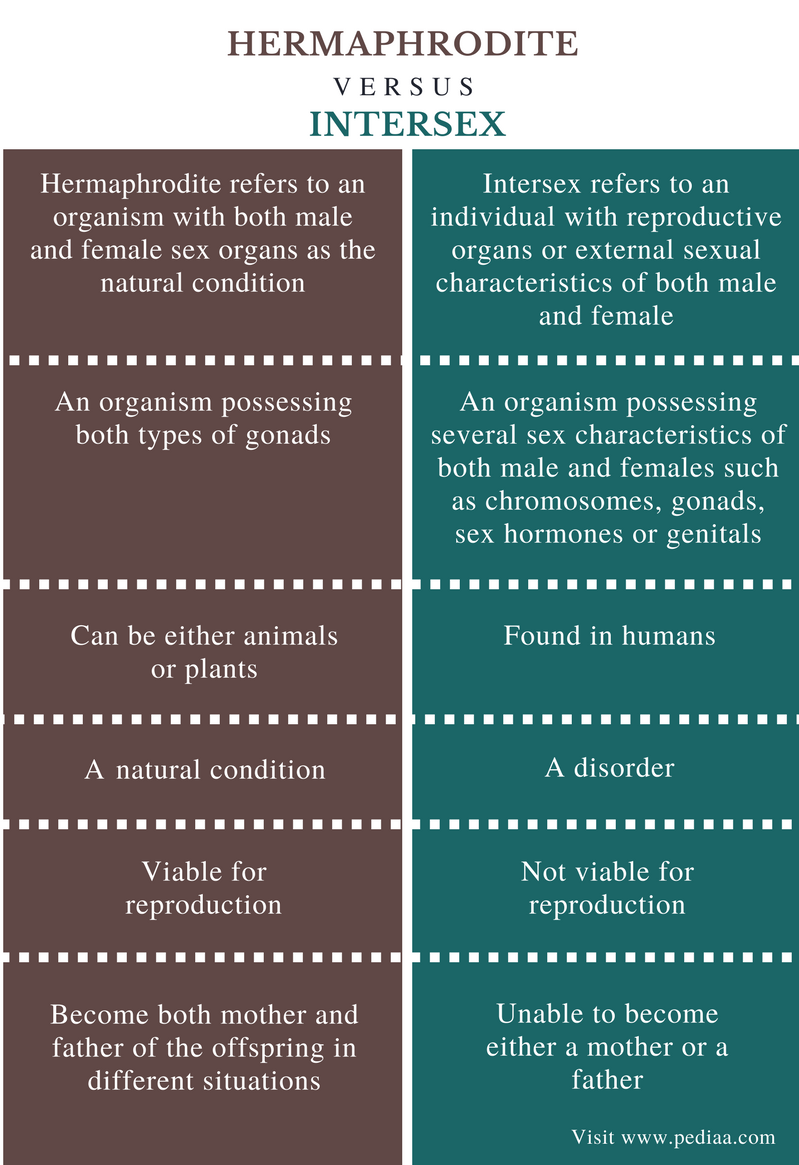 Difference Between Hermaphrodite and Intersex - Comparison Summary