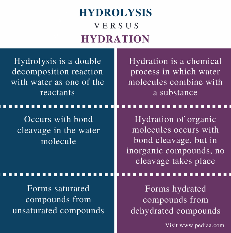 Difference Between Hydrolysis and Hydration - Comparison Summary