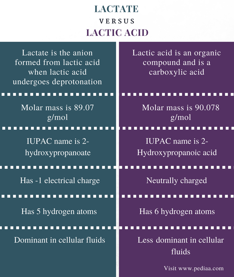 Difference Between Lactate and Lactic Acid - Comparison Summary