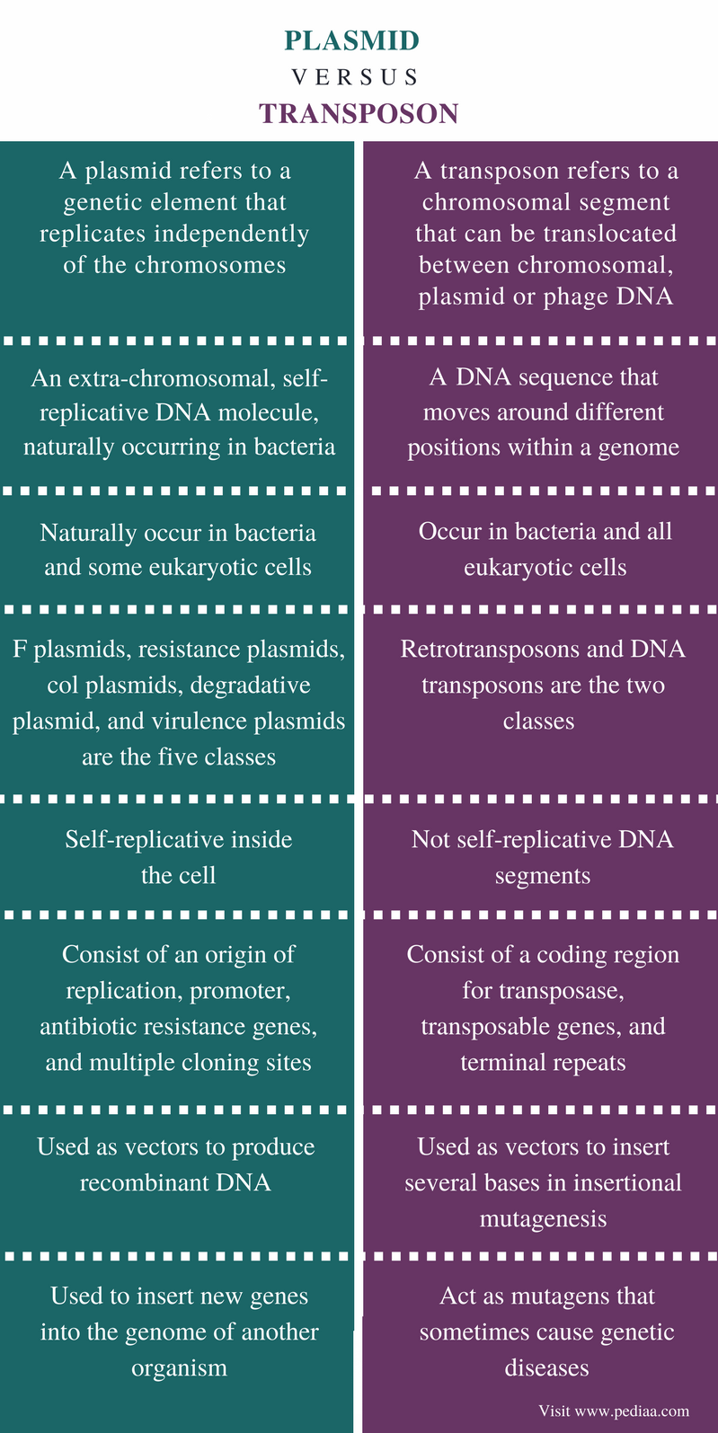 Difference Between Plasmid and Transposon - Comparison Summary