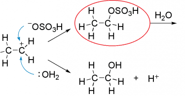Difference Between Sulfonation and Sulfation