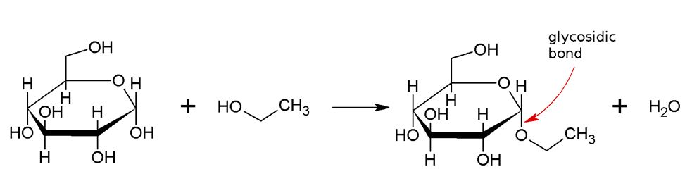 Main Difference - Alkaloid vs Glycoside