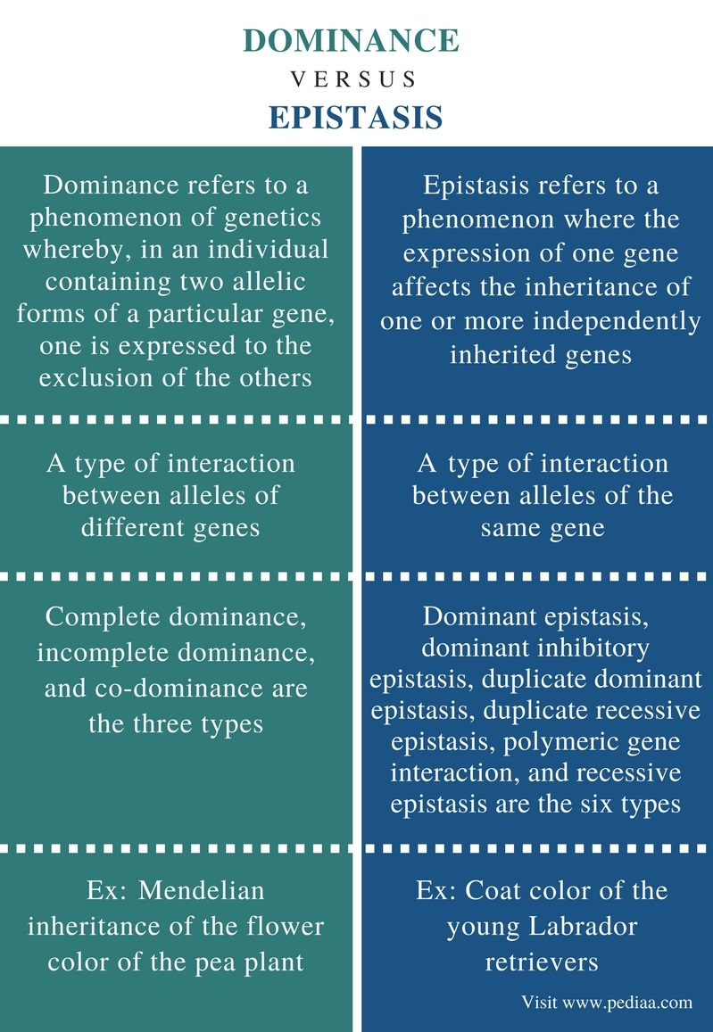 difference between dominance and epistasis
