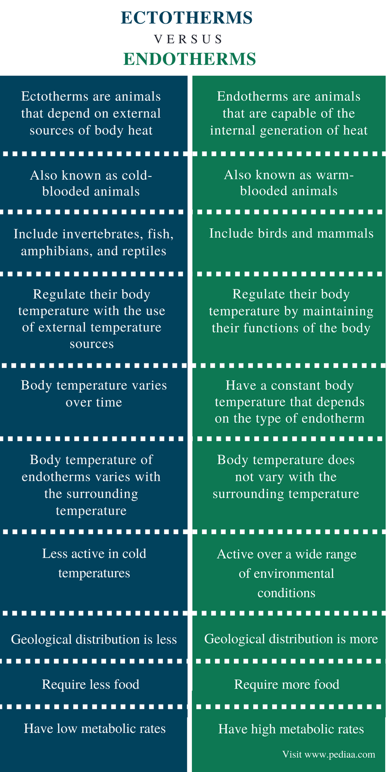Différence entre ectothermes et endothermes -. Résumé de la comparaison (1)
