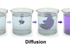 Difference Between Mass Transfer and Diffusion