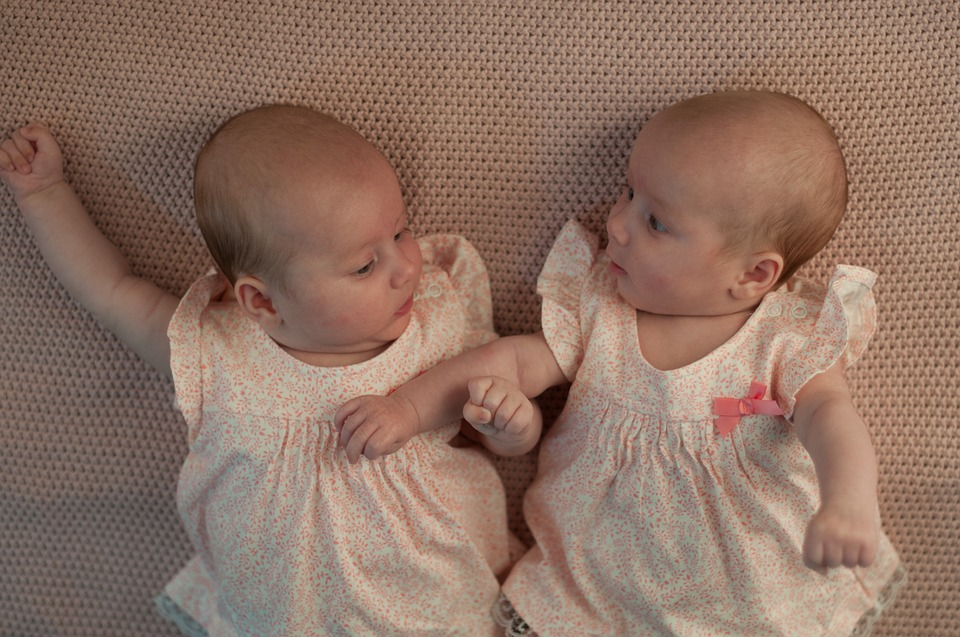 Difference Between Maternal and Paternal Twins