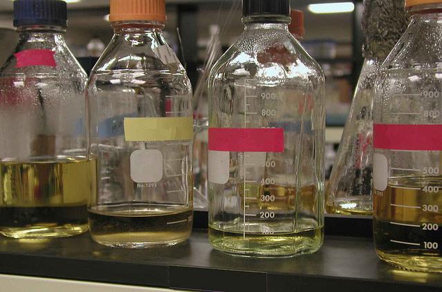 Main Difference - Nutrient Agar vs Nutrient Broth