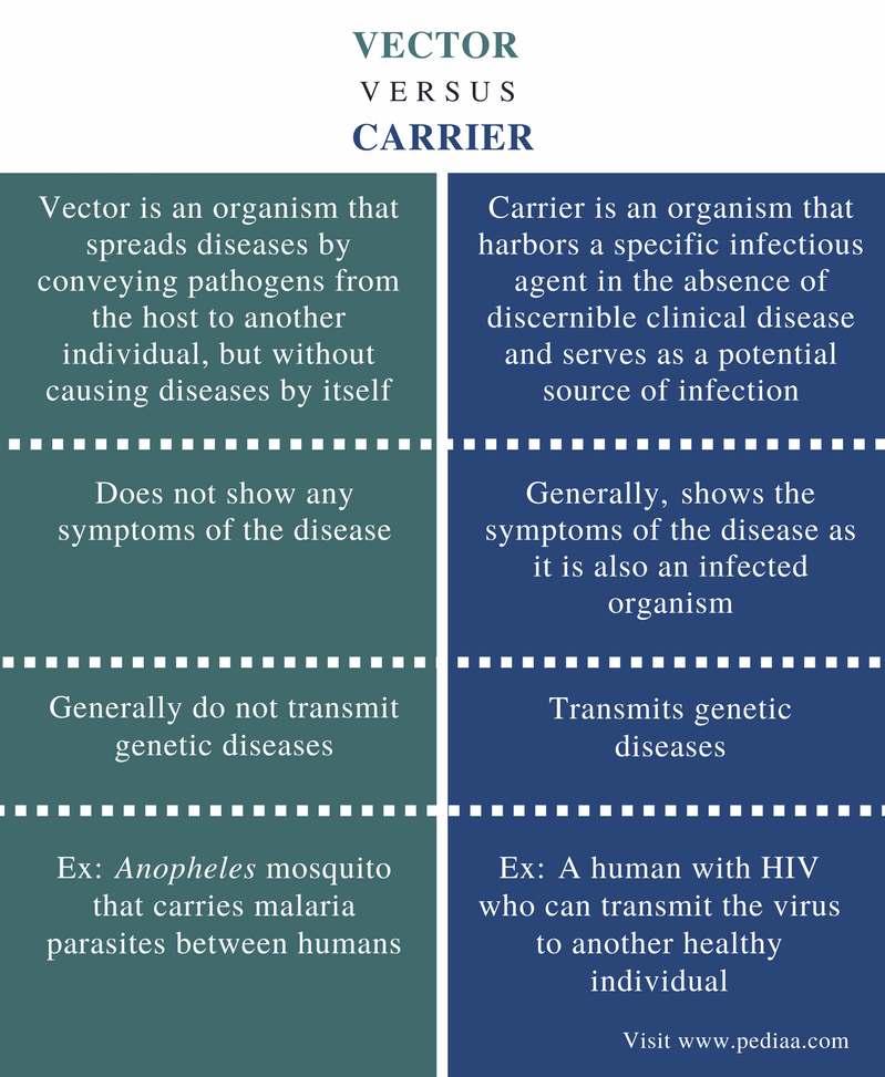 Difference Between Vector and Carrier - Comparison Summary