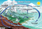 Why are Biogeochemical Cycles Important