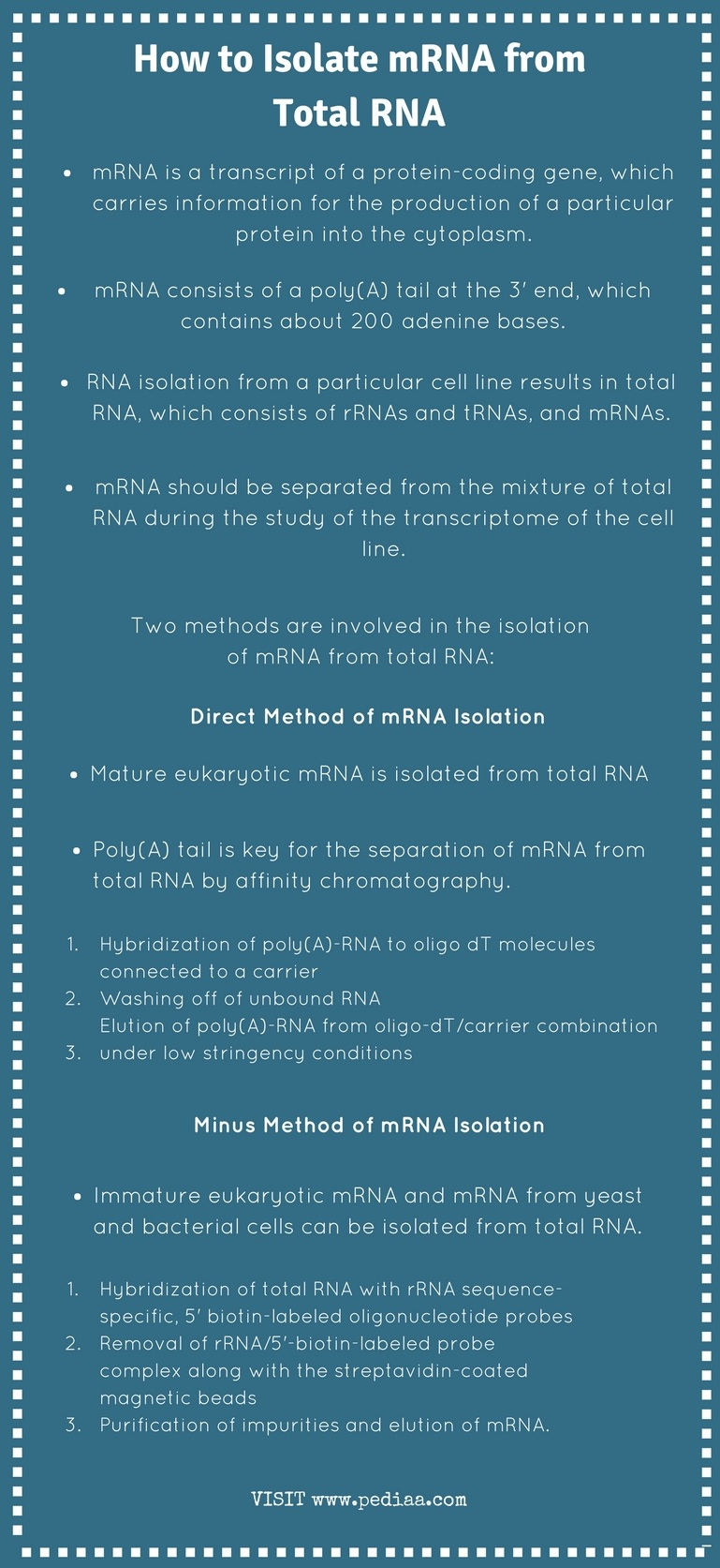 How to Isolate mRNA from Total RNA - Infographic