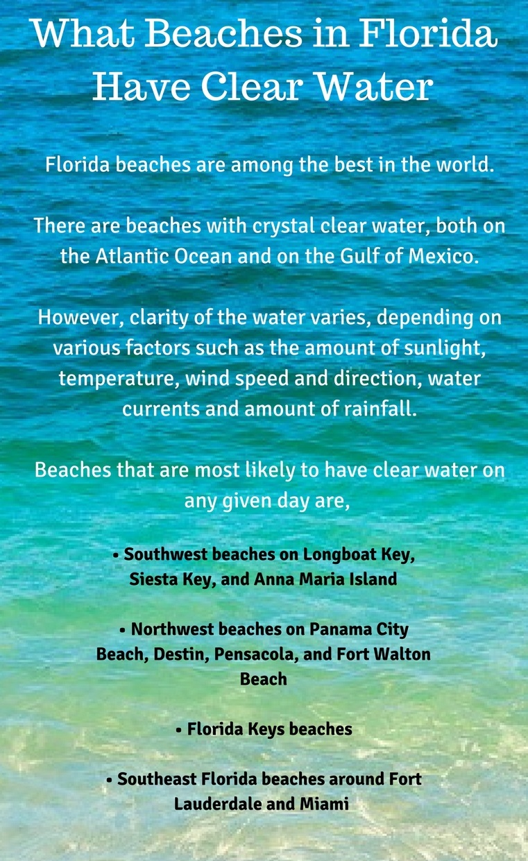 What Beaches in Florida Have Clear Water - Infographic