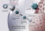 Why are Viruses Used in Gene Therapy