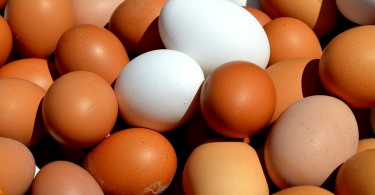 Difference Between Brown Eggs and White Eggs