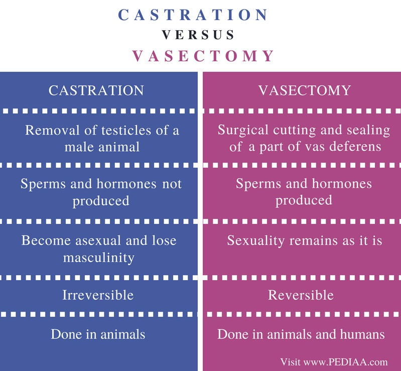 Difference Between Castration and Vasectomy - Comparison Summary