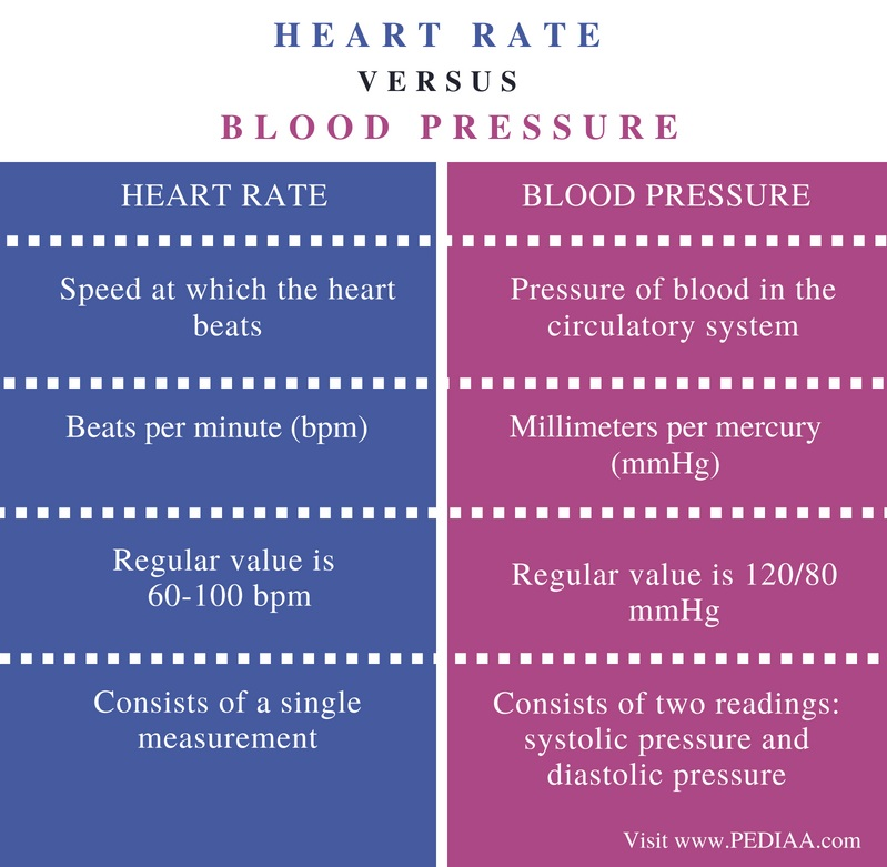 Difference Between Heart Rate and Blood Pressure - Comparison Summary