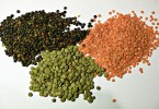 Difference Between Lentils and Beans