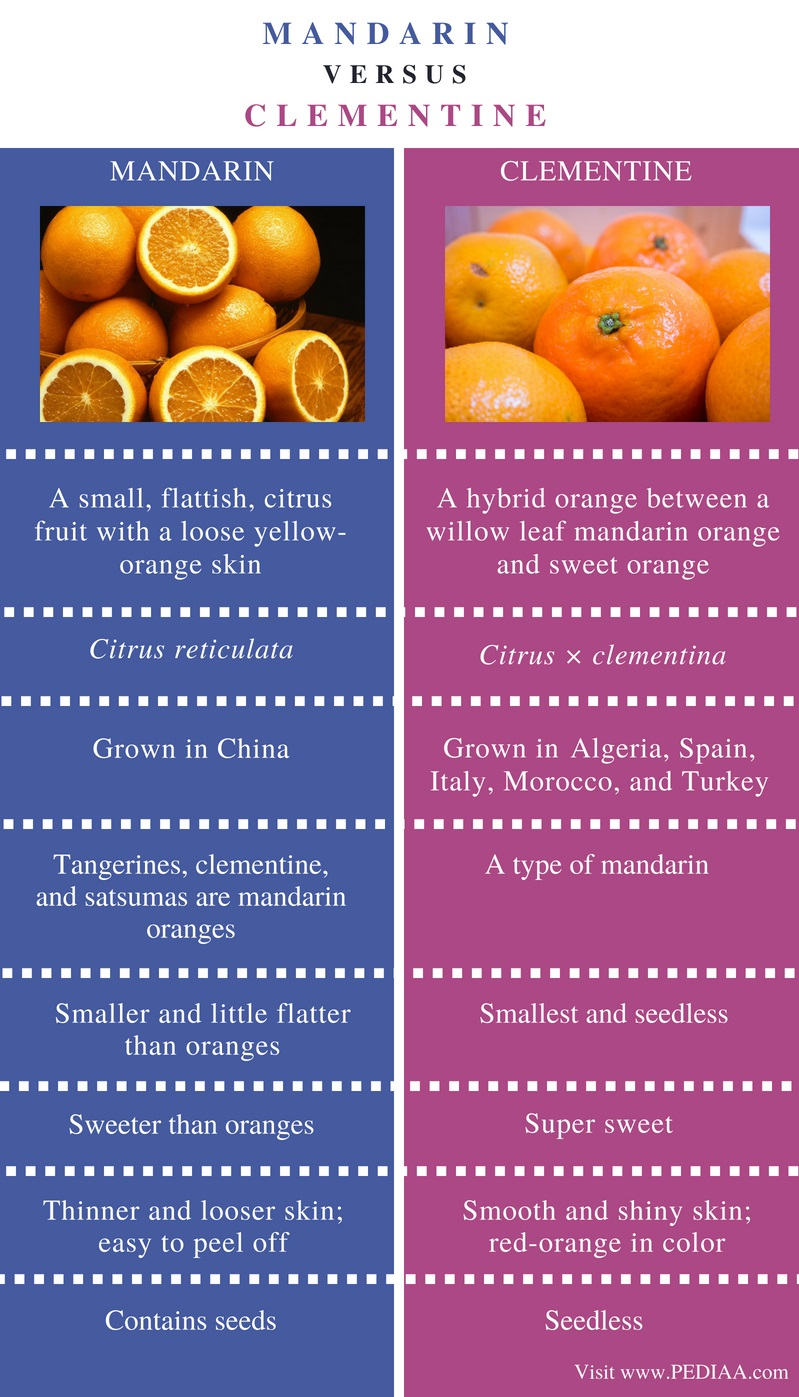 Difference Between Mandarin and Clementine - Comparison Summary