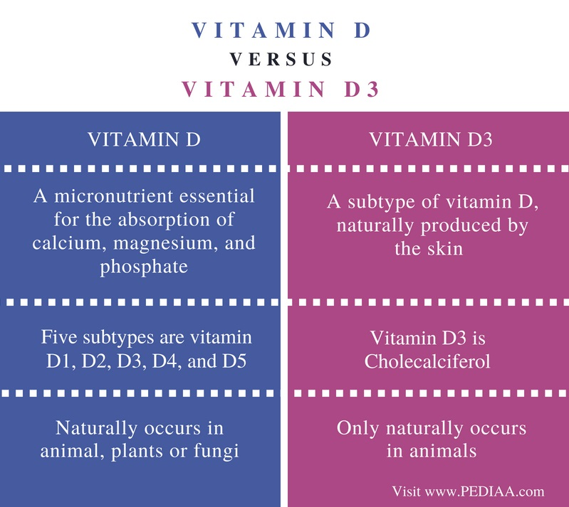 Difference Between Vitamin D and Vitamin D3 - Comparison Summary (1)