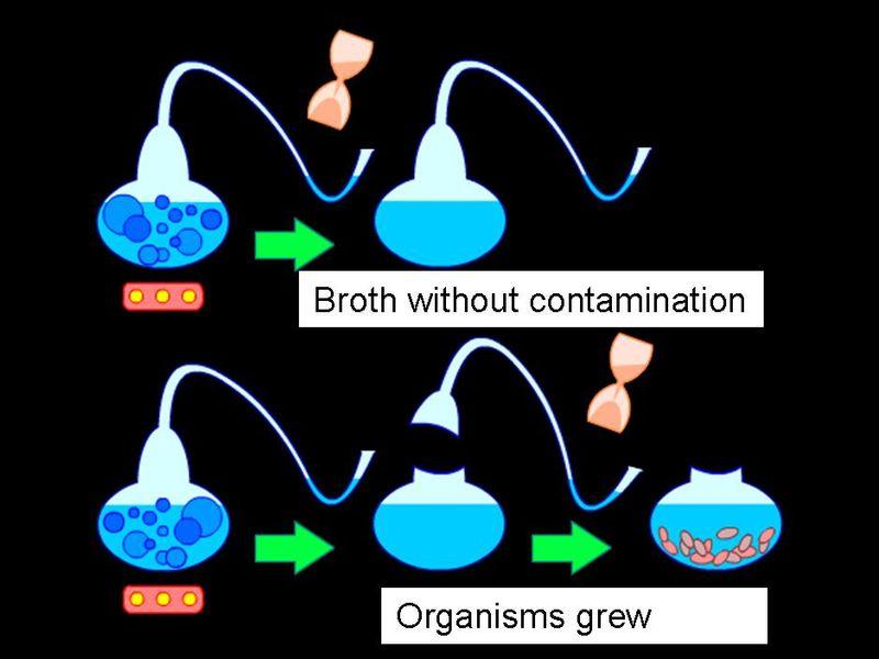 Main Difference - Descriptive vs Experimental Research