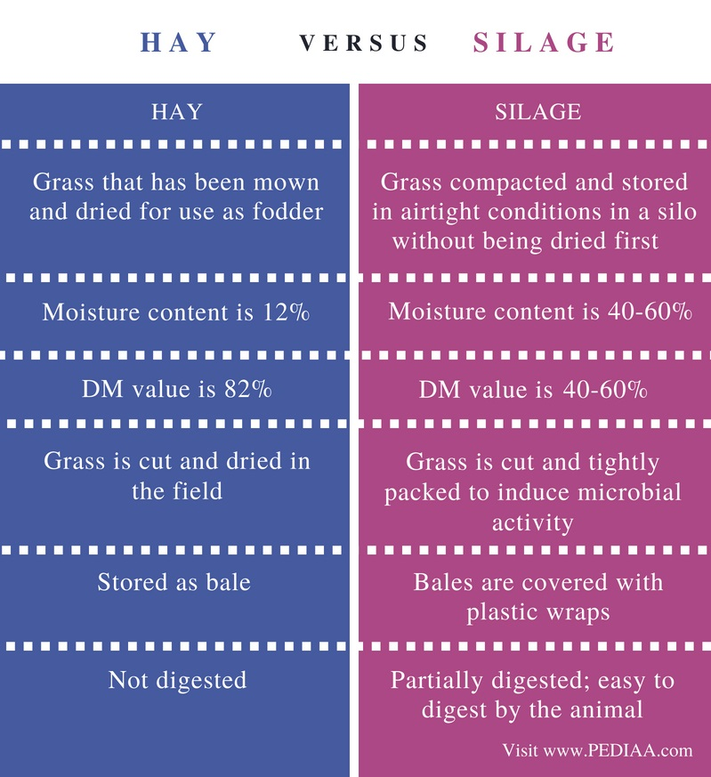 Difference Between Hay and Silage - Comparison Summary