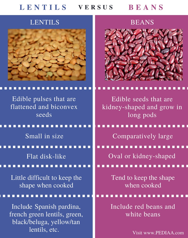 Difference Between Lentils and Beans - Comparison Summary