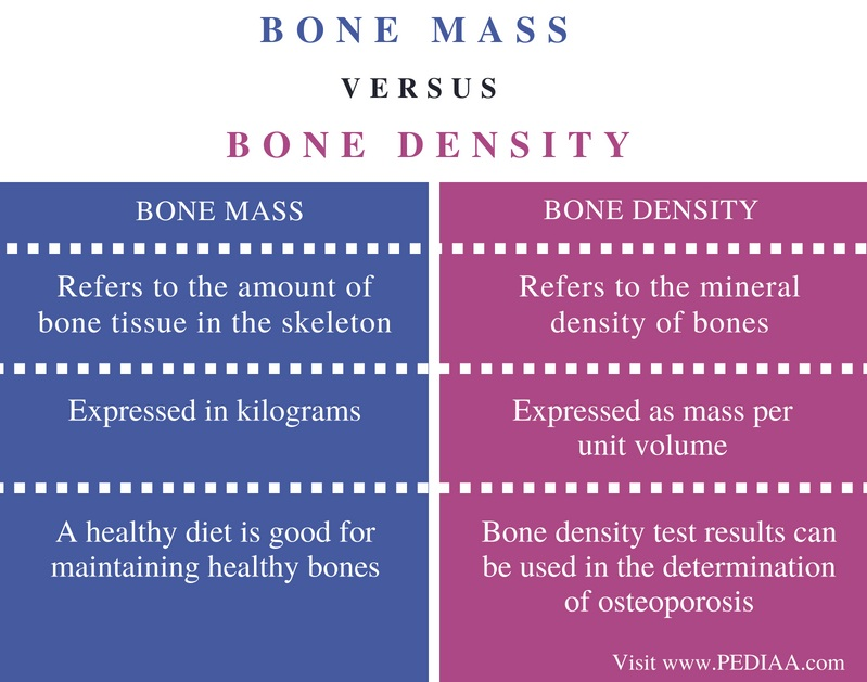 Difference Between Bone Mass and Bone Density - Comparison Summary