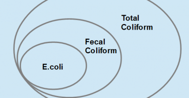 Difference Between E Coli and Coliform_Figure1