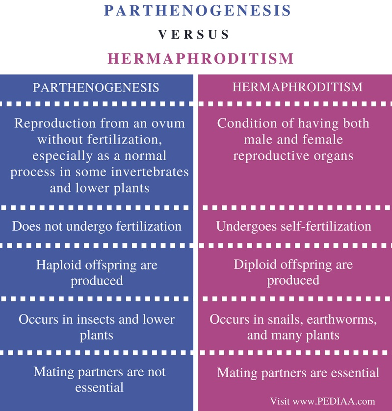Difference Between Parthenogenesis and Hermaphroditism - Comparison Summary
