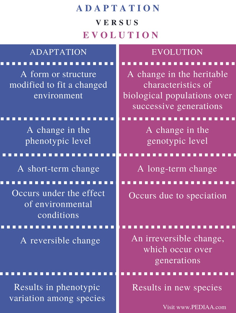 Difference Between Adaptation and Evolution - Comparison Summary