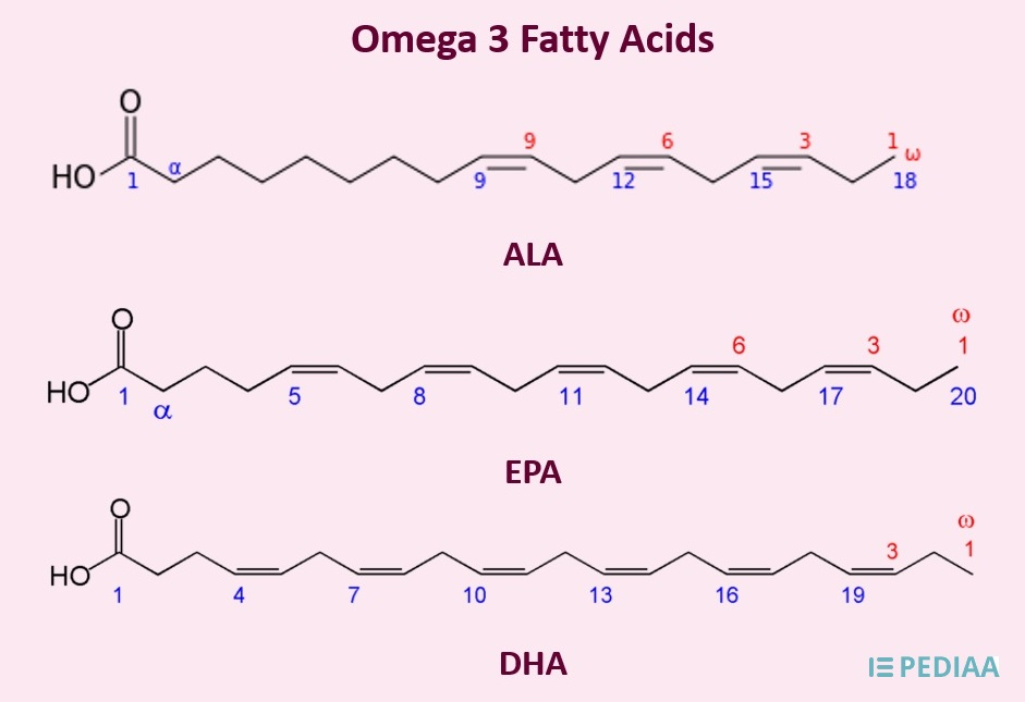 Main Difference - Fish Oil vs Omega 3