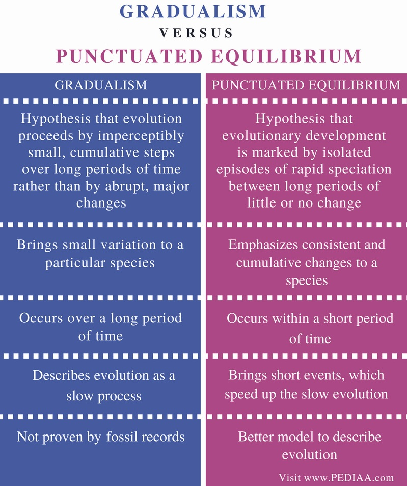 Difference Between Gradualism and Punctuated Equilibrium - Comparison Summary
