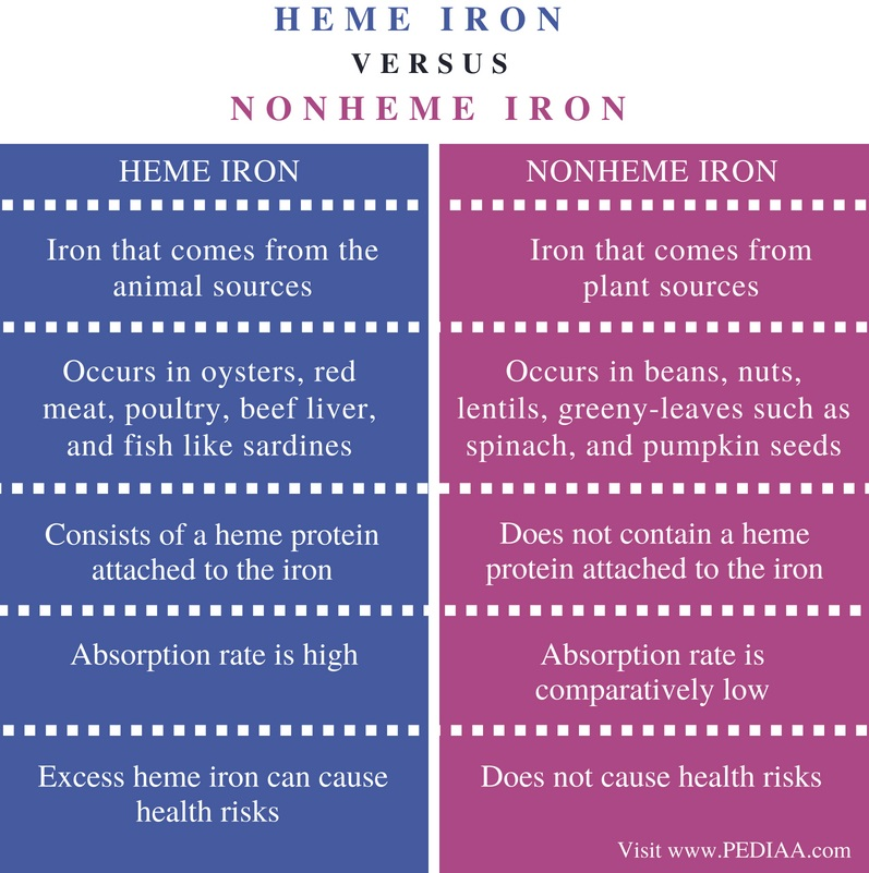Difference Between Heme and Nonheme Irons - Comparison Summary
