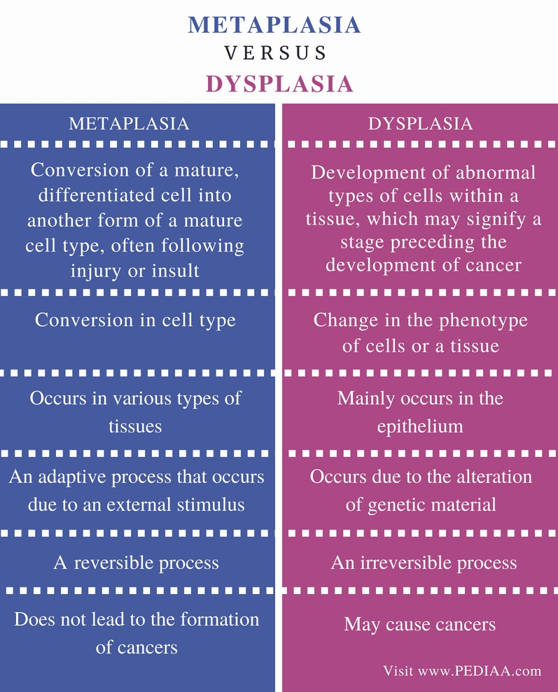 Difference Between Metaplasia and Dysplasia - Comparison Summary
