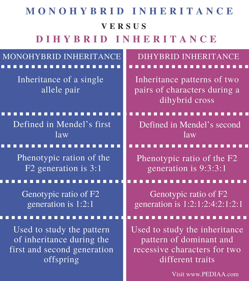 Difference Between Monohybrid and Dihybrid Inheritance - Comparison Summary