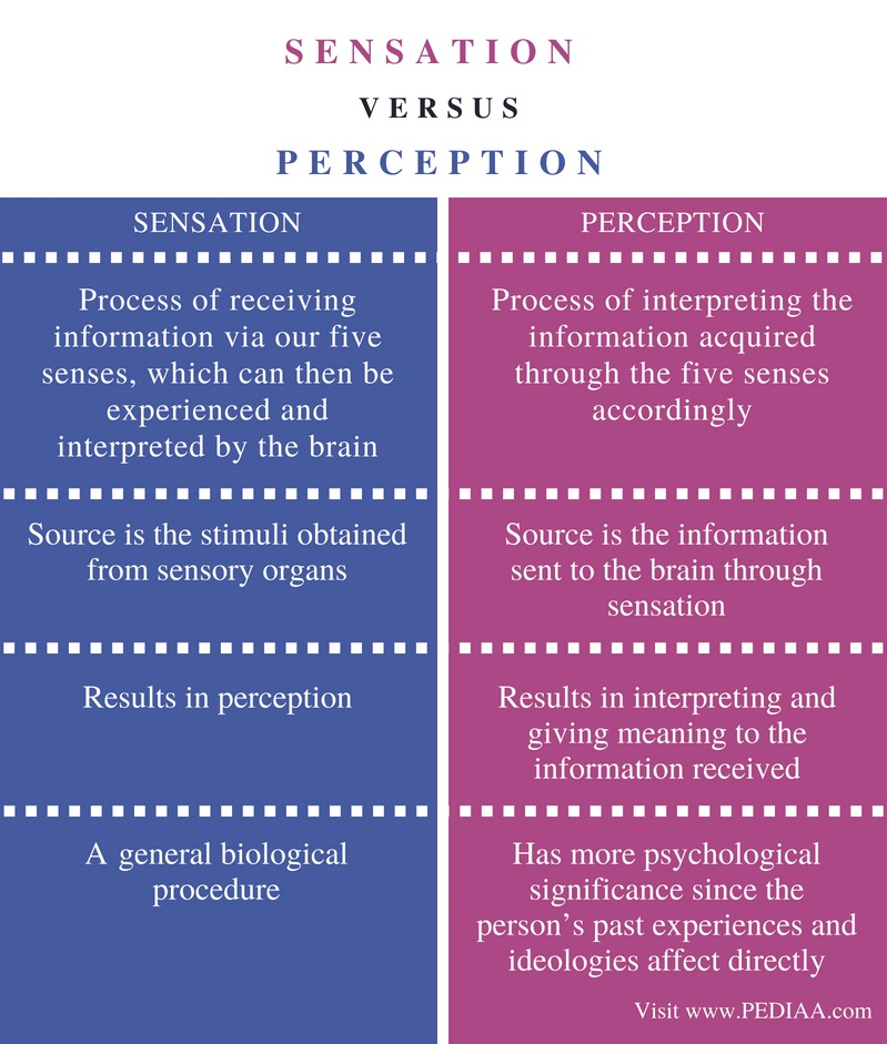 Difference Between Sensation and Perception - Comparison Summary