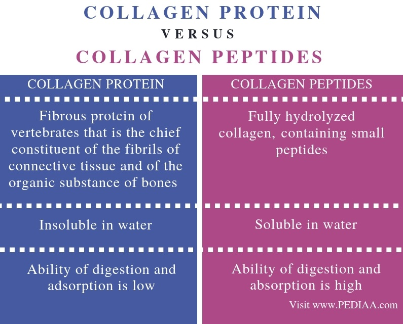 Difference Between Collagen Protein and Collagen Peptides - Comparison Summary