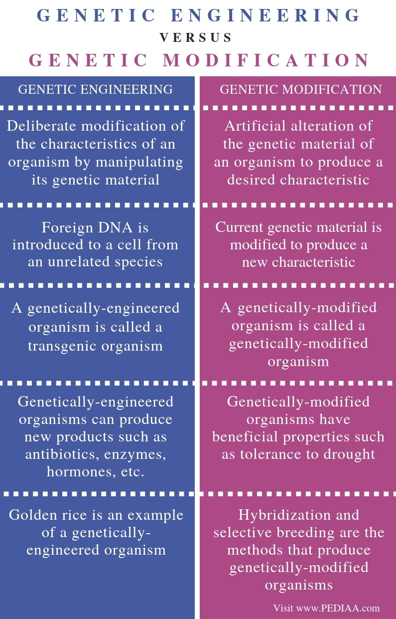 Difference Between Genetic Engineering and Genetic Modification - Comparison Summary