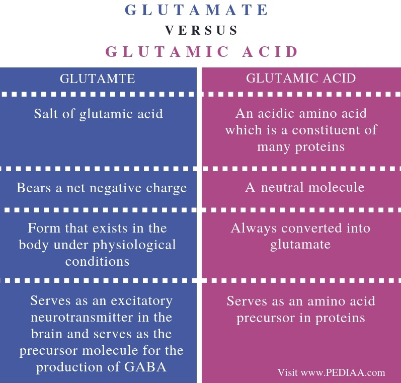 Difference Between Glutamate and Glutamic Acid - Comparison Summary