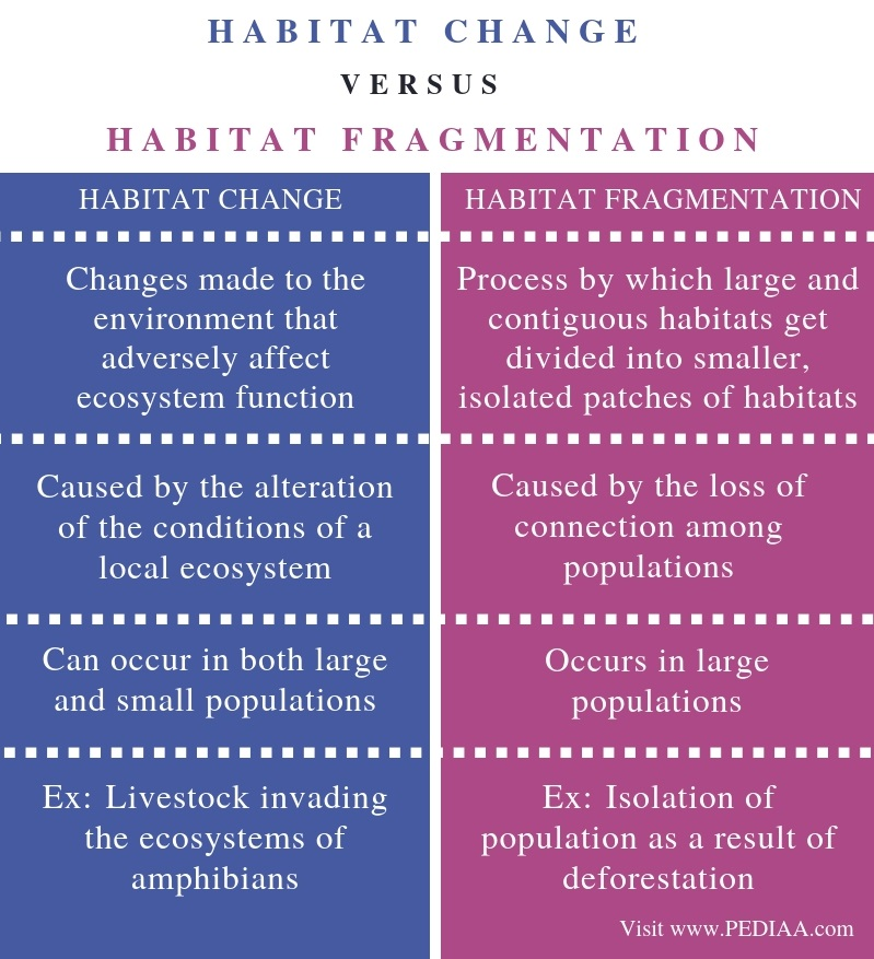 Difference Between Habitat Change and Habitat Fragmentation - Comparison Summary