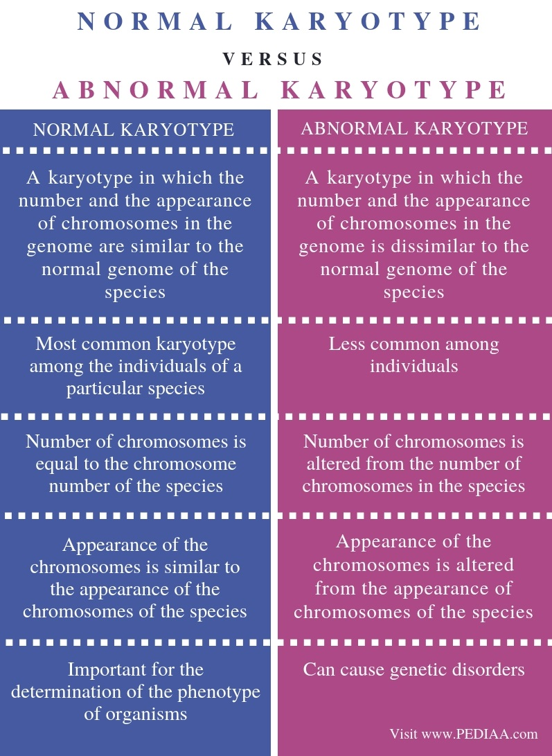 Difference Between Normal and Abnormal Karyotype - Comparison Summary
