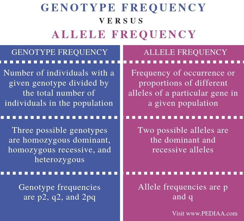 Difference Between Genotype Frequency and Allele Frequency - Comparison Summary